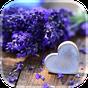 Η αγάπη λουλούδια