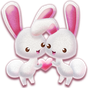 Love of the Rabbit Theme